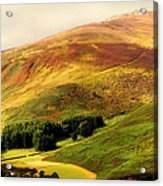 Find The Soul. Golden Hills Of Wicklow. Ireland Acrylic Print