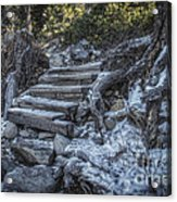 Find Your Own Way Acrylic Print