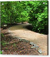 Finding The Way - Yates Mill Acrylic Print