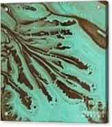 Finger Veins Acrylic Print