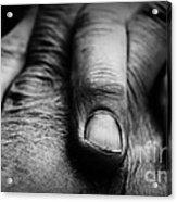 Fingers Acrylic Print