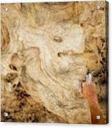 Fingers In A Pocket While Climbing Acrylic Print