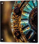 Fire Hydrant  Acrylic Print by Bob Orsillo