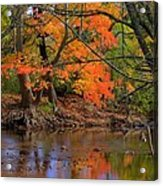 Fire In The Creek A1 - Owens Creek Near Loys Station Covered Bridge - Autumn Frederick County Md Acrylic Print