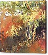 Fire Season Acrylic Print by Kris Parins