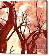 Fire Trees Acrylic Print