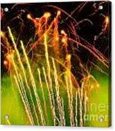 Firefly Fireworks Acrylic Print