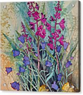 Fireweed And Bluebells Acrylic Print