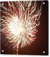 Firework Burst Acrylic Print by April Lerro