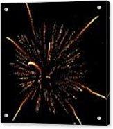 Fireworks 4 Acrylic Print by Mark Malitz