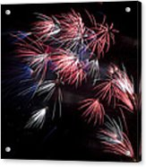 Fireworks 9 Acrylic Print by Sandy Swanson