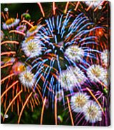 Fireworks Flower Abstract Acrylic Print