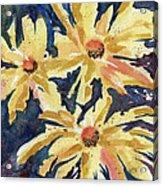 Fireworks In Flower Acrylic Print