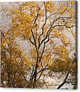 First Day Of Winter 2 Acrylic Print