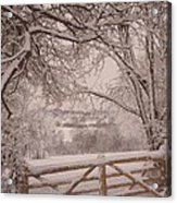 First Fall Of Snow Acrylic Print