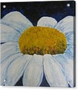 First Flower Acrylic Print