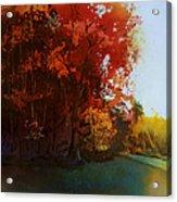 First Light Acrylic Print by Kris Parins