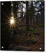 First Light Of Morning Acrylic Print