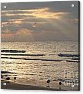First Rays Of Dawn Acrylic Print