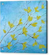 First Signs Of Spring Acrylic Print