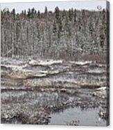 First Snow-algonquin Provincial Park Acrylic Print
