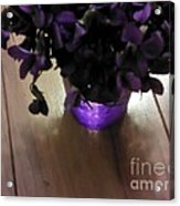 First Violets Acrylic Print