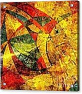 Fish 369 - Marucii Acrylic Print