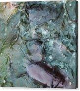 Fish Abstract Acrylic Print