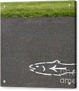 Fish And Arrow On Pavement Acrylic Print