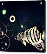 Fish Bubbles Acrylic Print