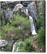 Fish Canyon Falls Acrylic Print