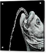 Fish Head Fountain Acrylic Print