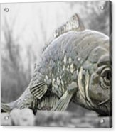 Fish Sculpture Acrylic Print