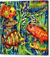 Fish Tales IIi Acrylic Print by Ann  Nicholson