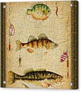 Fish Trio-c-green Acrylic Print