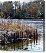 Fishing At Weeks Bay Acrylic Print