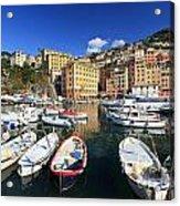 fishing boats in Camogli Acrylic Print