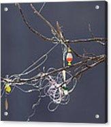 Fishing Line Sculpture Acrylic Print