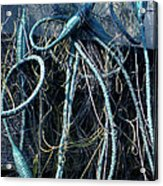 Fishing Net Play   Acrylic Print by Colette V Hera  Guggenheim