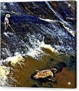 Fishing On The South Fork River Acrylic Print