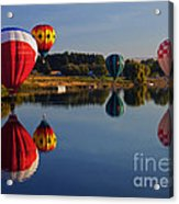 Five Aloft Acrylic Print by Mike  Dawson