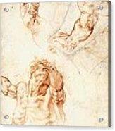 Five Studies For The Figure Of Haman Acrylic Print