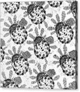 Flagellar Membranes Of Moth Sperm, Tem Acrylic Print