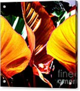 Flaming Plant Acrylic Print