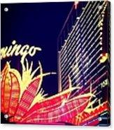 Flamingo At Night Acrylic Print