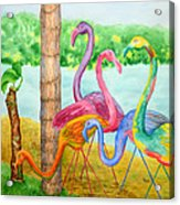 Flamingo Dingos Acrylic Print