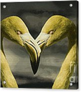 Flamingo Love Acrylic Print