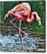 Flamingo Splash Two Acrylic Print