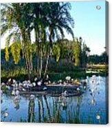 Flamingo Watering Hole Acrylic Print