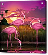 Flamingoes Flamingos Tropical Sunset Landscape Florida Everglades Large Hot Pink Purple Print Acrylic Print
